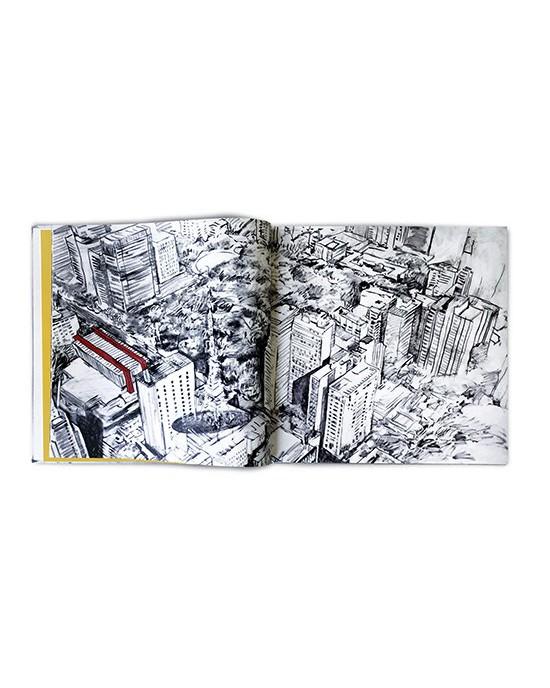 A Cidade e a Rosa - Paulo von Poser